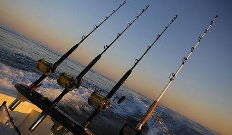 Blogging is like fishing, the more hooks in the water, the more chances of catching a fish